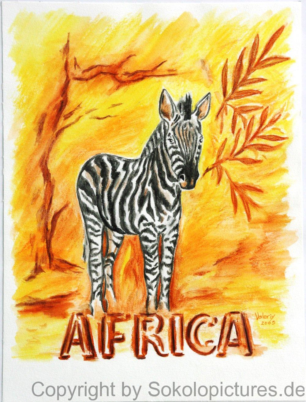 zebra2-2